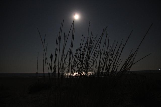 Lune Gruissan